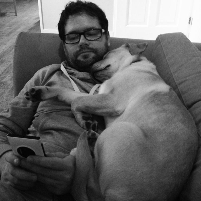 knuffel-pup
