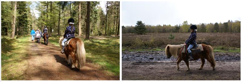 pony-rijden-landal