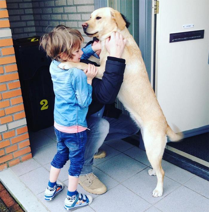 hond-22