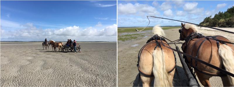 paardrijden-somme-baai