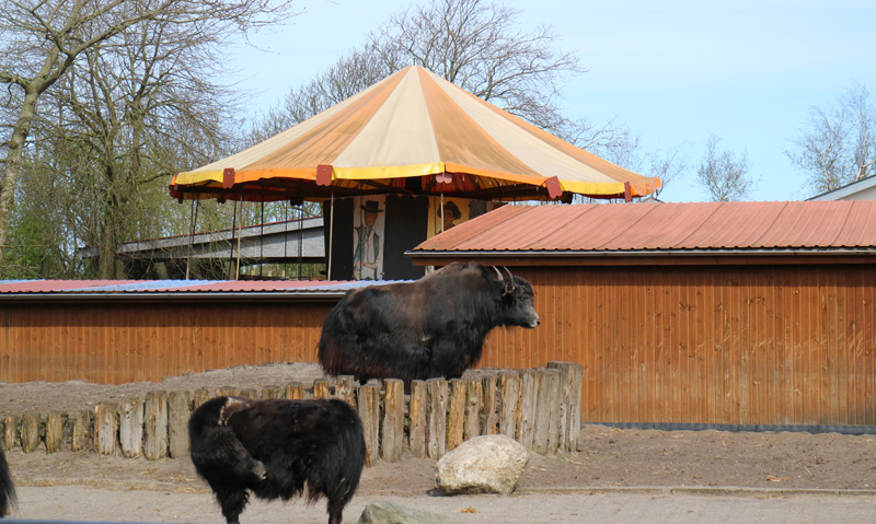 Jyllands zoo ouderwets