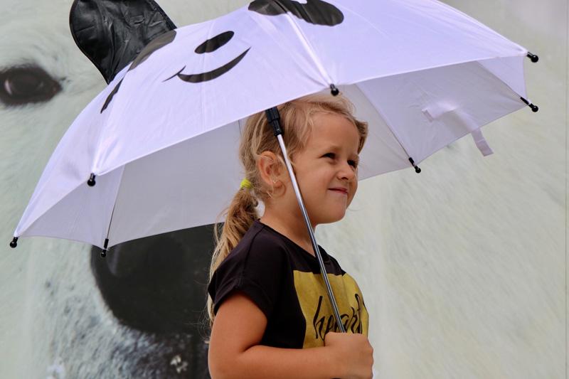 panda paraplu