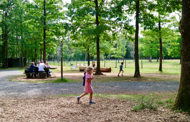 picknick plek wildpark grotten van han