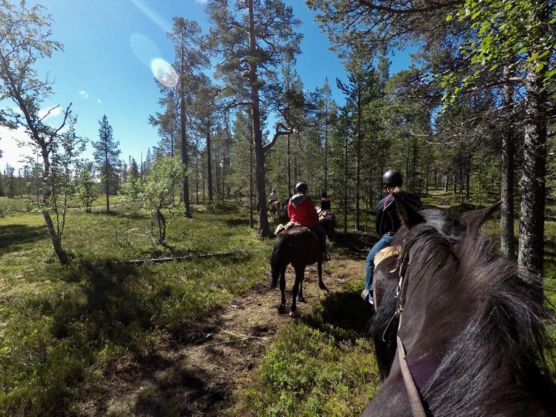 idre fjall paardrijden