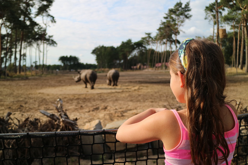 neushoorn safariresort beekse bergen
