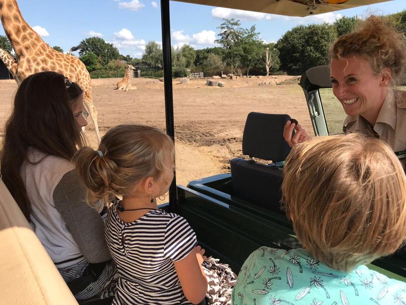 safari resort gamedrive