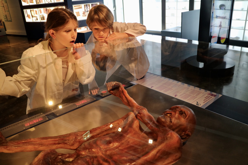 Continium Discovery Center otzi