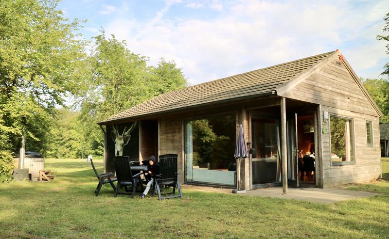 damhert bungalow dierenbos