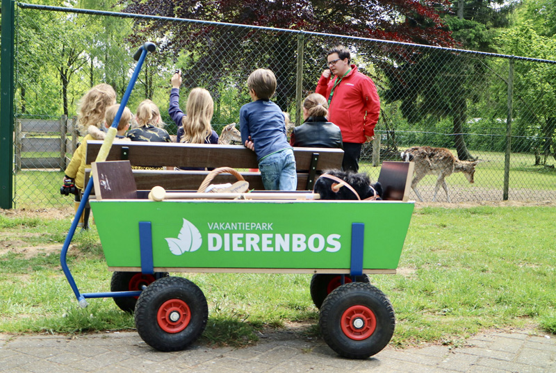 dierenbos review