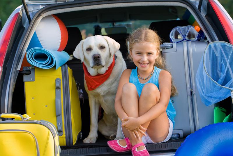 hond mee vakantie