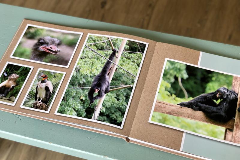 fotoboek online