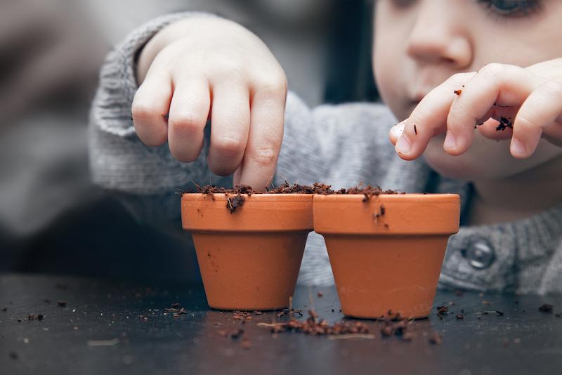 plantjes pasen activiteit