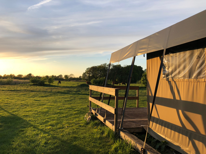 safaritent nederland boeken